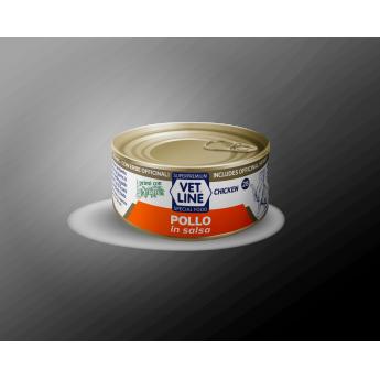 POLLO  IN SALSA  (24 Pezzi x 70gr)
